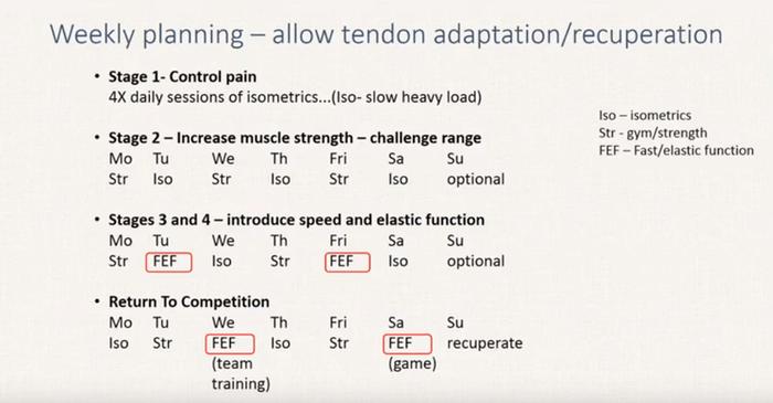 tendinopatia-rotulea-ginocchio-progressione-esercizi